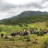 فعالیت در کوهستان در دوره همهگیری ویروس کرونا