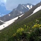 پایان نامه سرپرستی و مدیریت بحران در برنامههای کوهنوردی