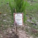 """مراسم یادبود دوست و همنورد عزیز """"محمد نعمتی"""""""