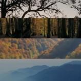 ۱۱ دسامبر، روز جهانی کوهستان